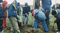 Enfants plantant un arbre